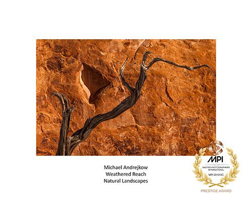 Master Photographers International - Best in Class trophy Award Michael Andrejkow
