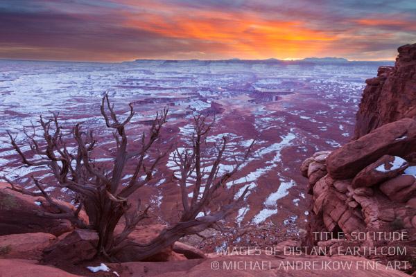 Utah Fine Art Prints for sale Desert landscape tree canyons sunset red rock Michael Andrejkow