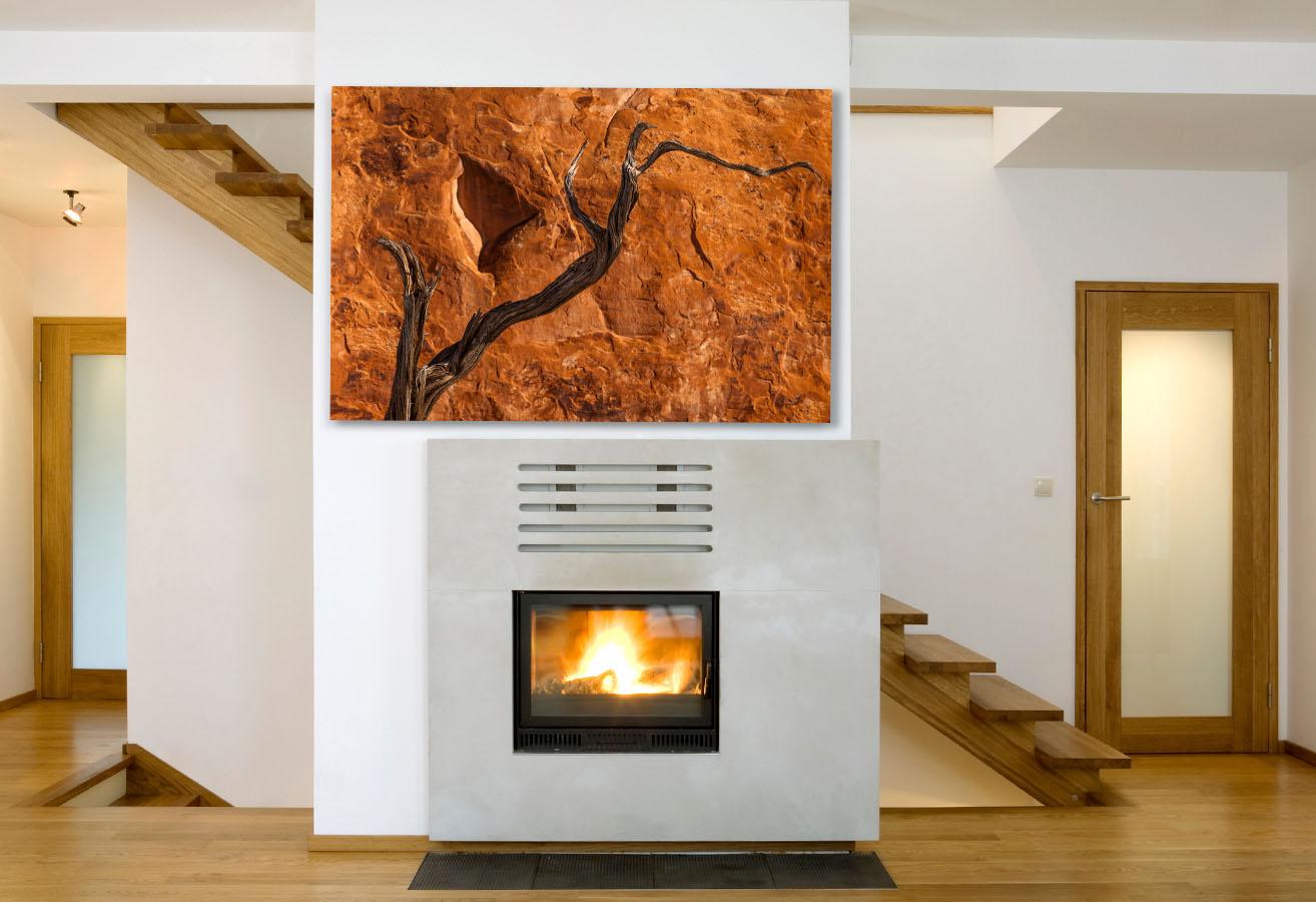 Utah Southwest Desert Fine Art Photography Sandstone Tree Weathered Reach Home Decor Artwork Michael Andrejkow