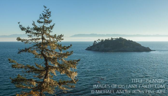 Vancouver Island Fine Art Coastal Tree Ocean Island Luxury Home Decor Collection Michael Andrejkow