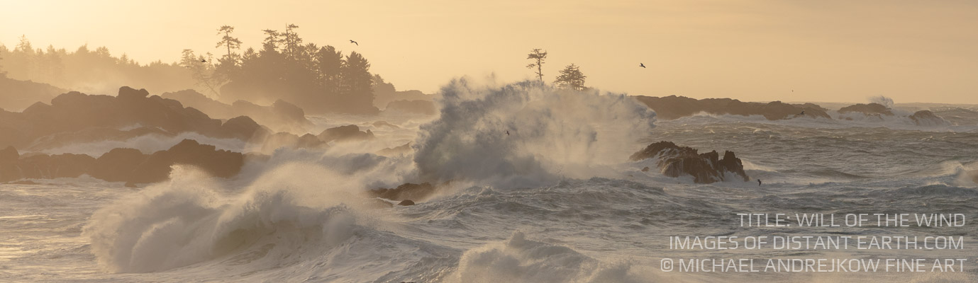 Vancouver Island Fine Art seascape ocean waves surf Will of the Wind Michael Andrejkow